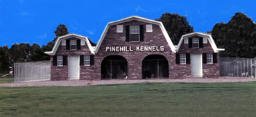 Welcome Pinehill Kennels - Dedicated to breeding the finest Elhew